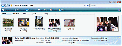 click for larger view of thumbnails of image files with the file extension dng in Windows Explorer on Vista